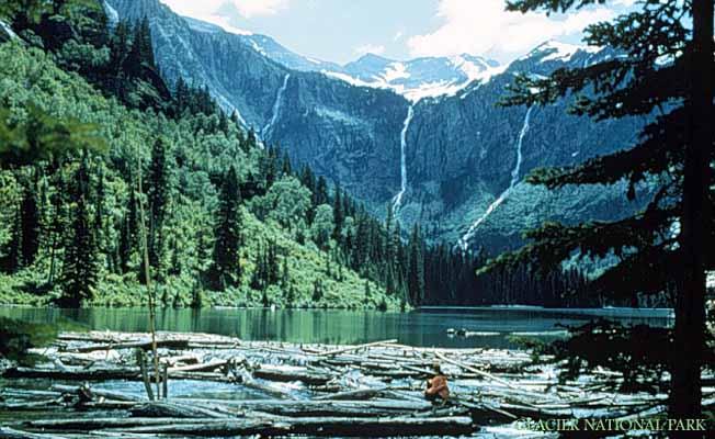 Avalanche Creek Campground