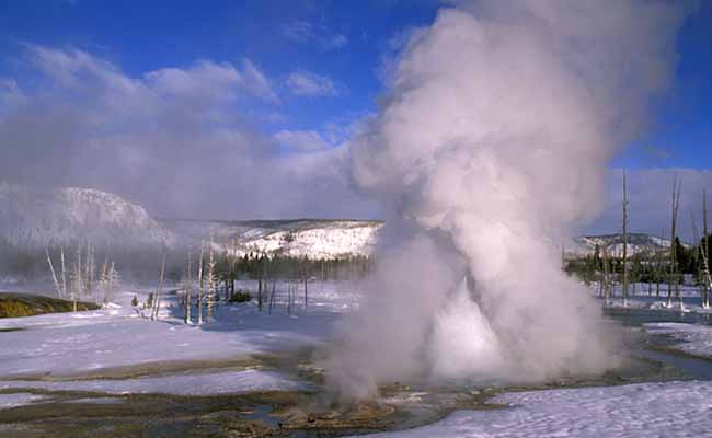 Yellowstone Adventures Inc. profile image