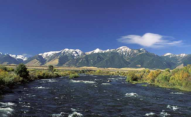 Madison River Outfitters profile image