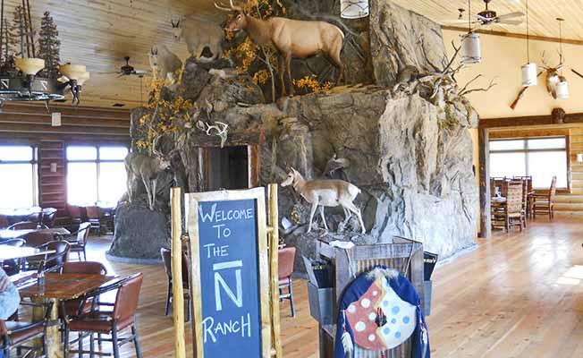 Bar N Ranch profile image