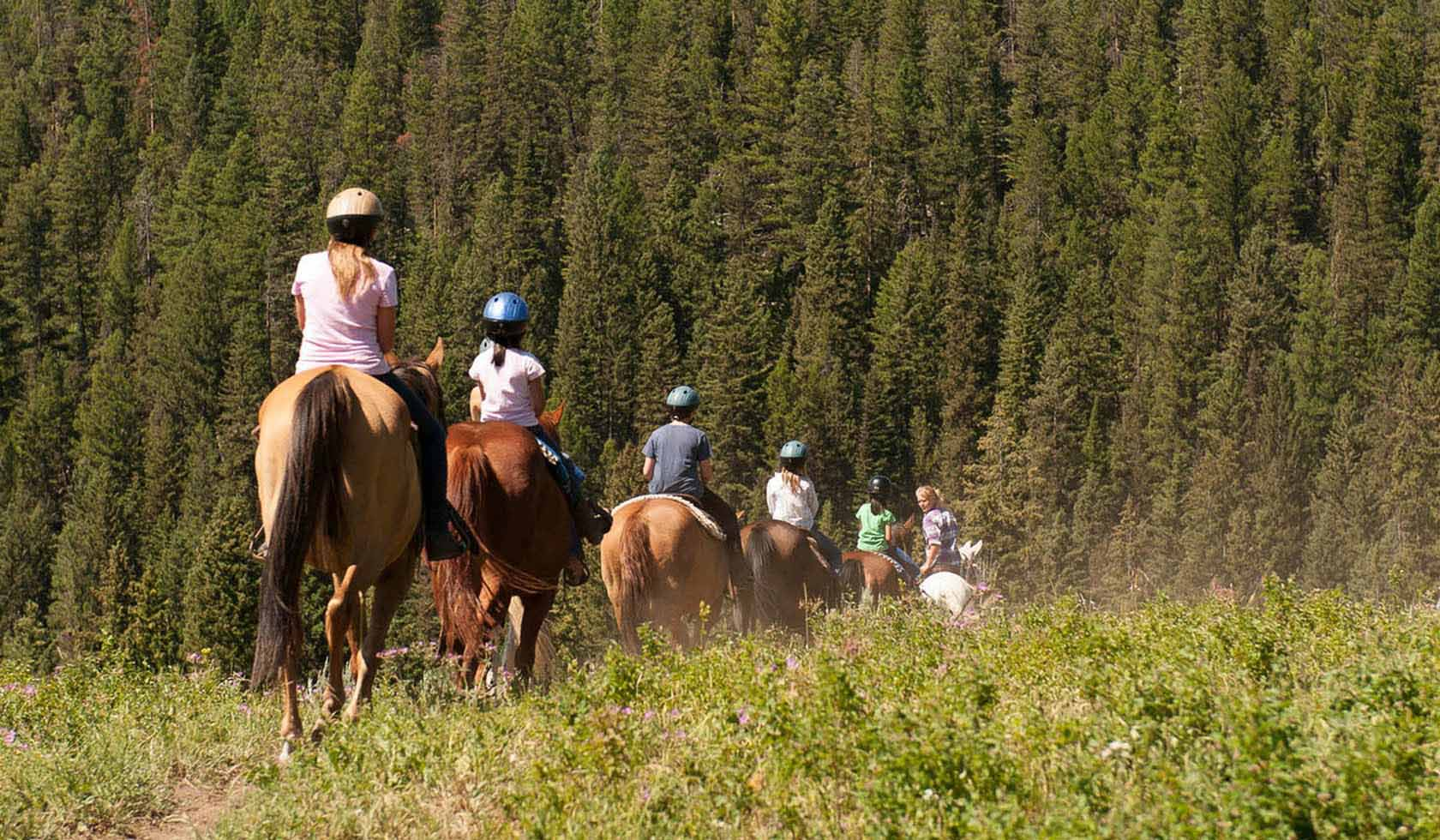 Lone Mountain Ranch Guided Recreational Services profile image