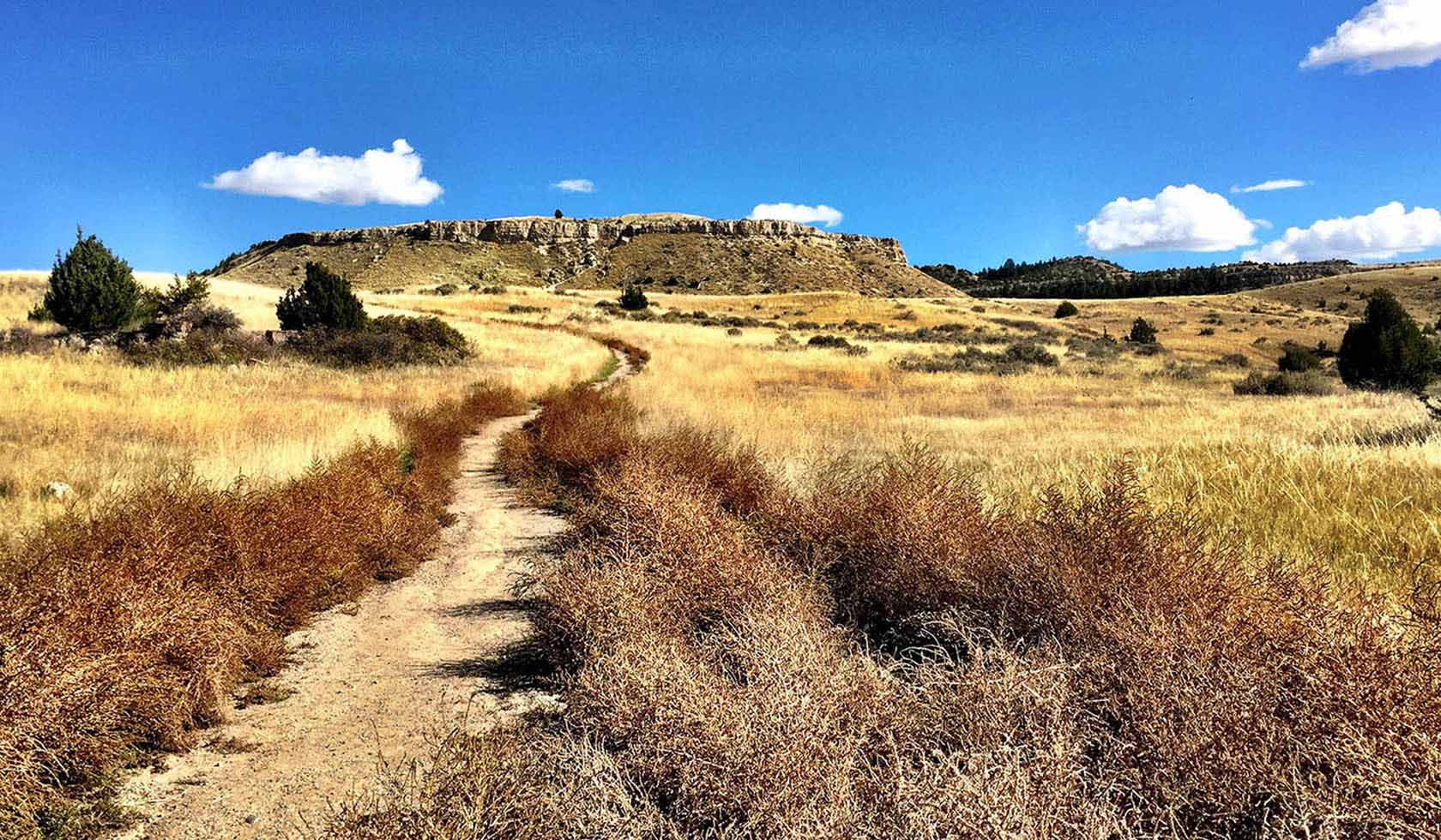 Madison Buffalo Jump State Park profile image