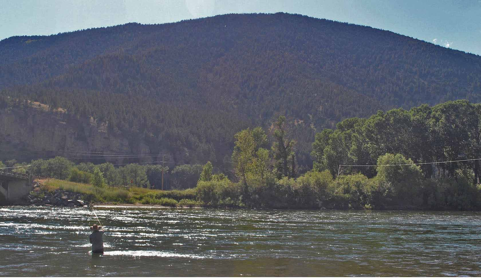 Carters Bridge profile image