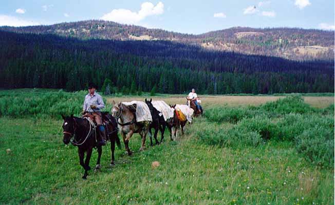 Montana Guide Service profile image