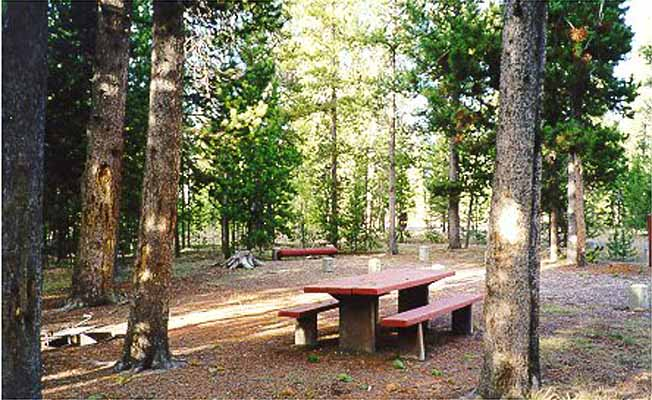 Rainbow Point Campground profile image
