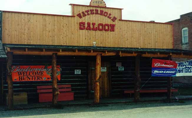 Waterhole Saloon profile image